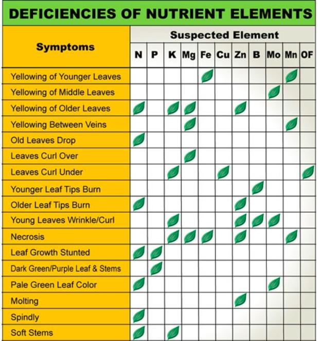 essential plant nutrients and their deficiency symptoms pdf