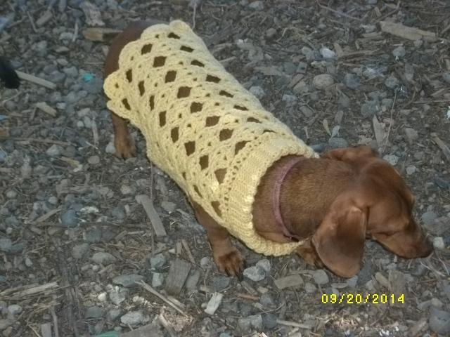 Copper Llama Studio Dog Sweater Crochet Patterns