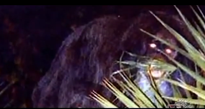 The Legendary Skunk Ape Documentary