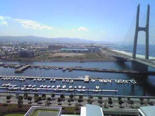 View from my room at the Kansai Language Institute