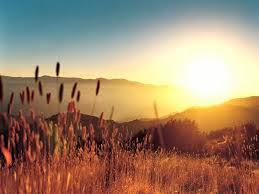 summer sunset, sunset