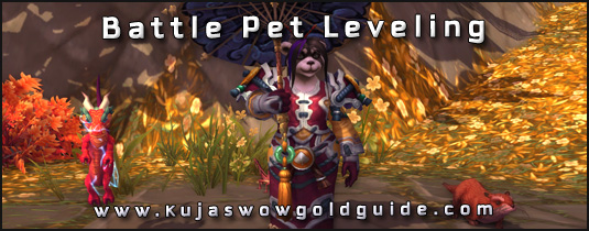 wow how to get your first battle pet
