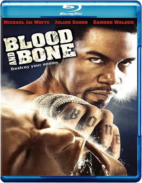 Blood And Bone 2009 Hindi Dubbed Dual BRRip 480p 300mb