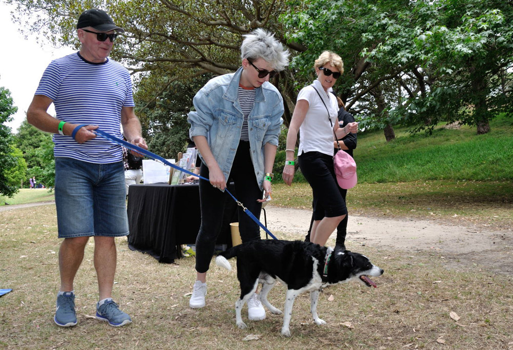 Arriving and registration, at Pets In The Park Gala Picnic, Centennial Park Sydney