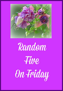 Random 5 on Friday at Circling Through This Life