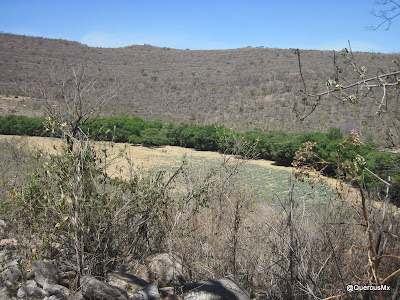 Los Ahuahuetes es al Arroyo los Sabinos  - Los Sabinos es a la Sierra del Madroño