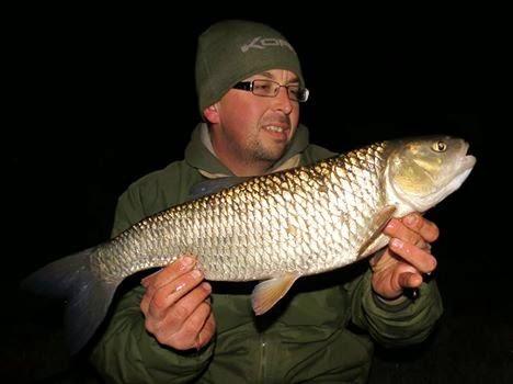 River Derwent specimen chub
