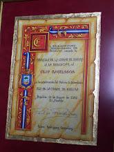Medalla de la Ciudad -2012-