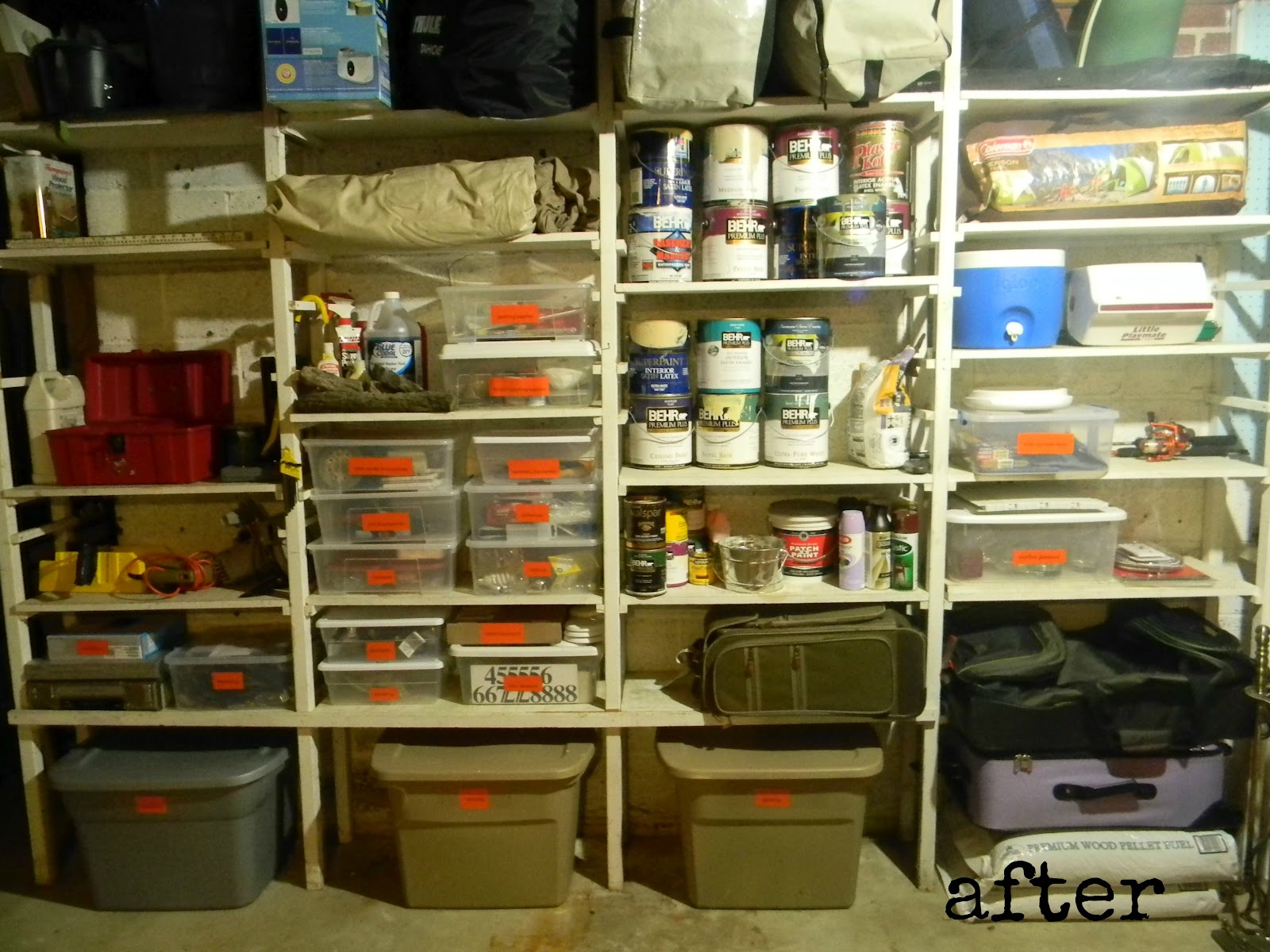 the diligent one basement shelf organization