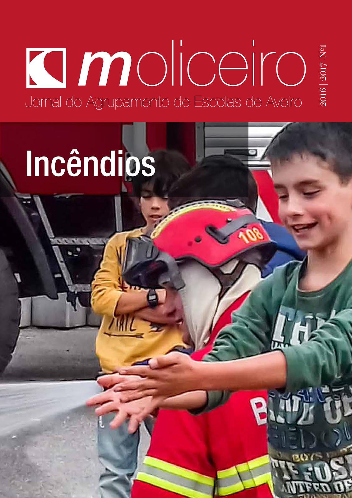 Jornal Moliceiro   Número 1   2016/17