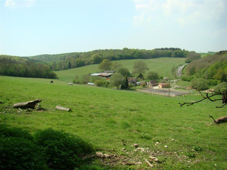 CUTLER´S FARM FROM THE WOODS