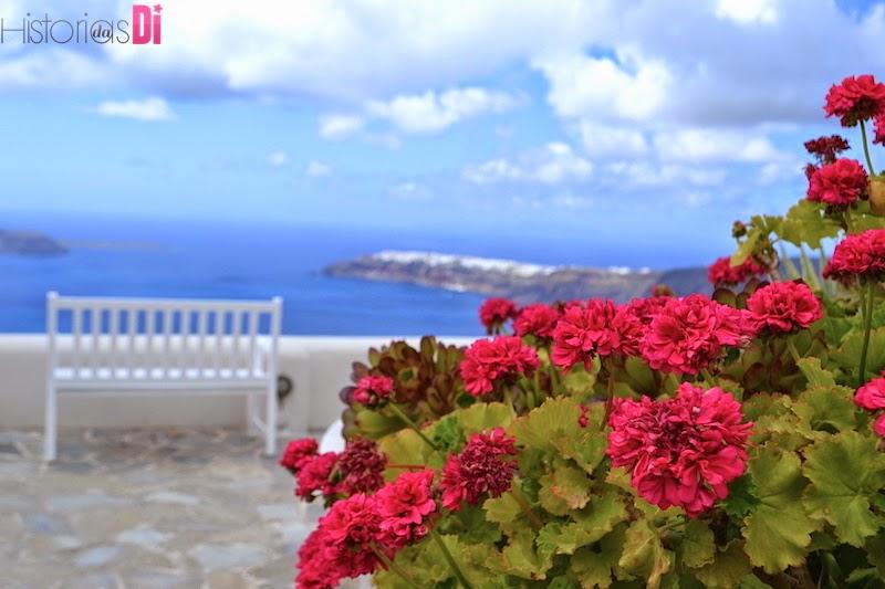 As lindas flores rosas e banquinhos brancos do Andromeda Villas