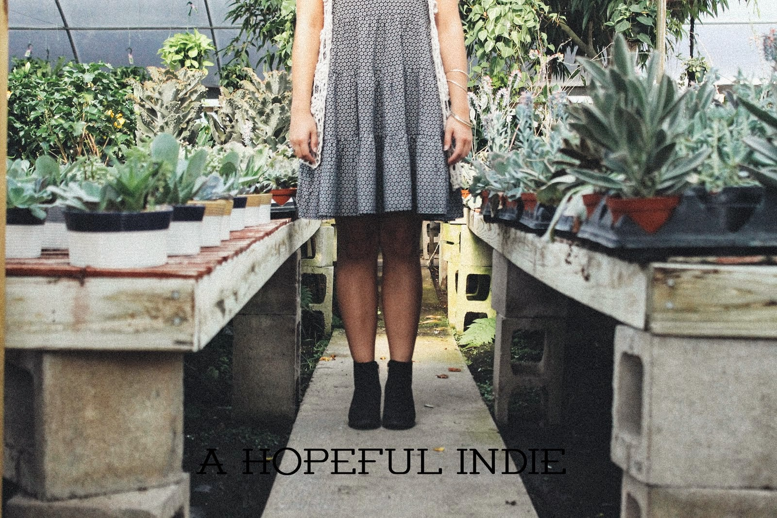 A Hopeful Indie