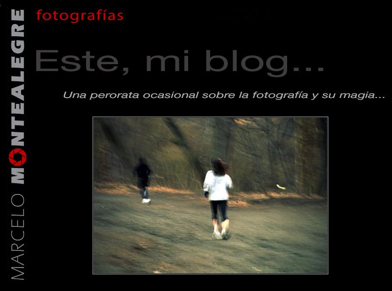 Este, mi blog...