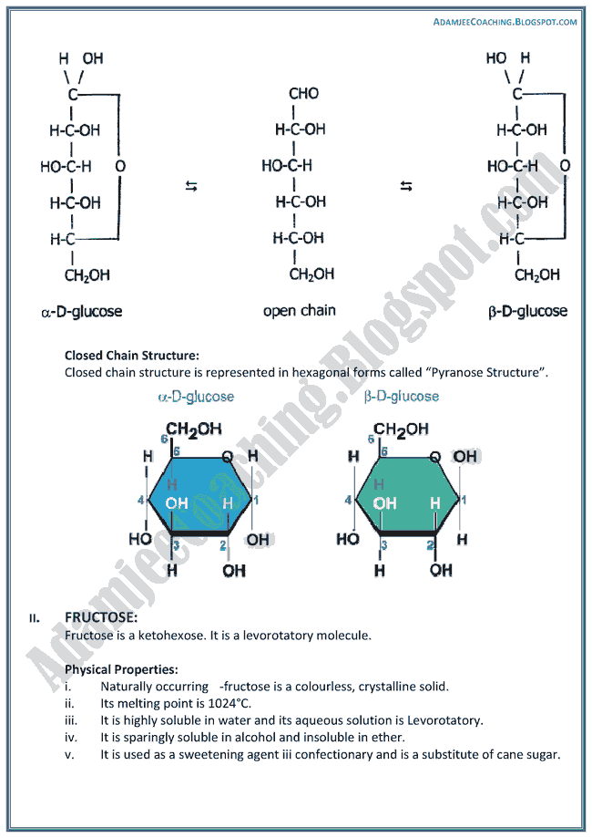XII Chemistry Notes - Chemistry Of Life