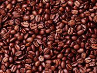 ARABIAN COFFEE BEANS