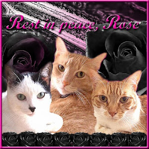 RIP QM ROSE