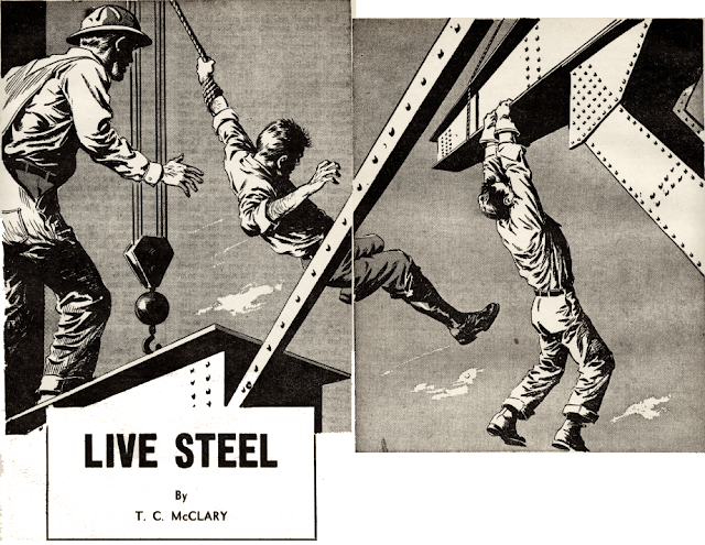 Illustration for Live Steel by T. C. McClary