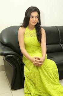 Actress Mishti Chakraborty Picture Gallery in Long Dress at Chinnadana Nee Kosam Audio Launch freshgallery.in40.jpg