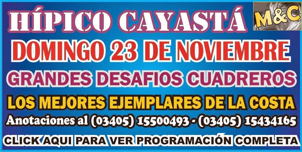 CAYASTA - 23/11/14
