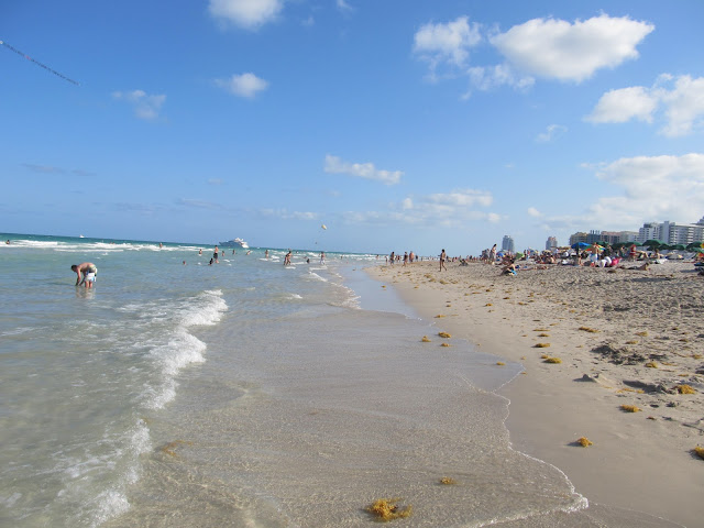 miami beach, scenery, teresita blanco