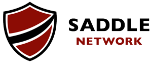 Saddle Network
