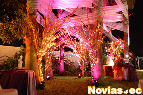 Eventos charlott for Telas para decorar salones