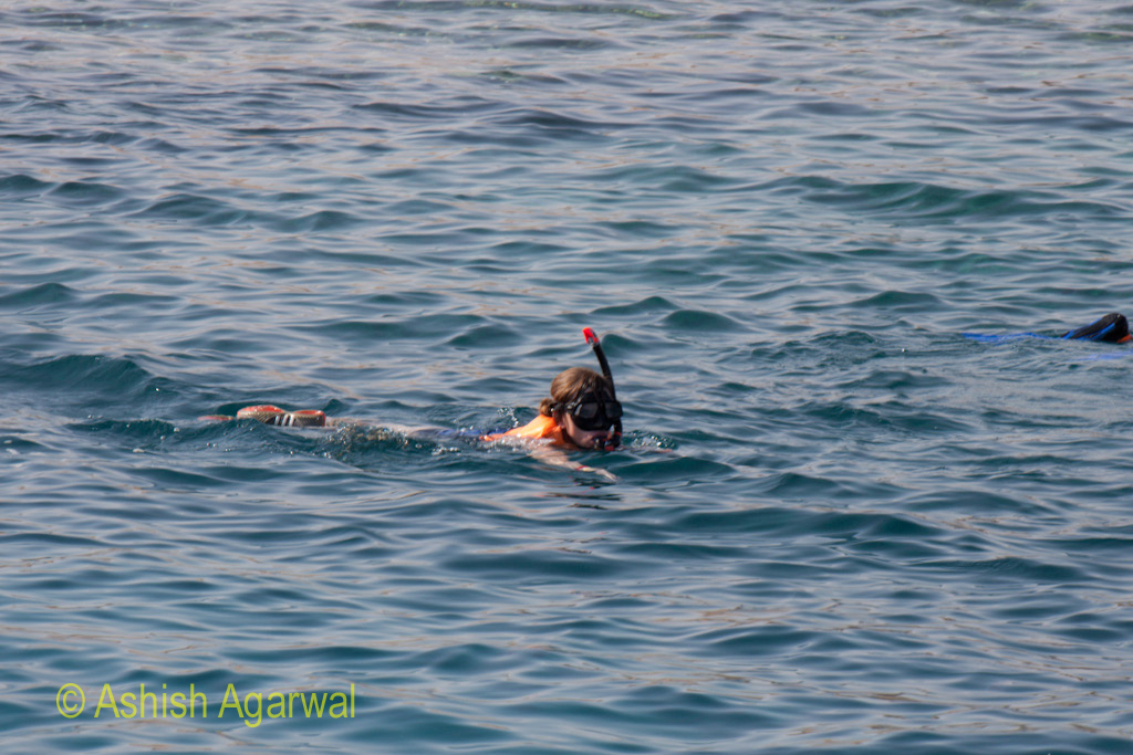 A lady wearing snorkeling gear and with her face outside the water in the Ras Muhammed marine park