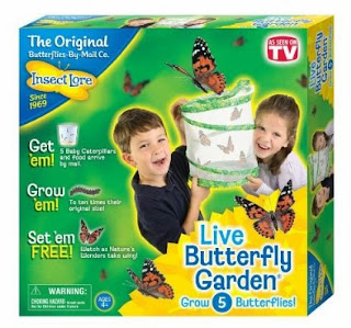 http://www.amazon.com/Insect-Lore-Live-Butterfly-Garden/dp/B00000ISC5/ref=sr_1_1?ie=UTF8&qid=1432177072&sr=8-1&keywords=butterfly+kits+with+live+caterpillars