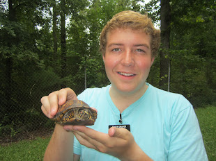 SAVE THE TURTLE DAY 8/16/2012