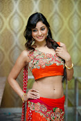 Shilpi Sharma Photos at Trisha Pre launch fashion Show-thumbnail-14