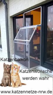 Der Katzenbalkon vom Katzennetz-Profi