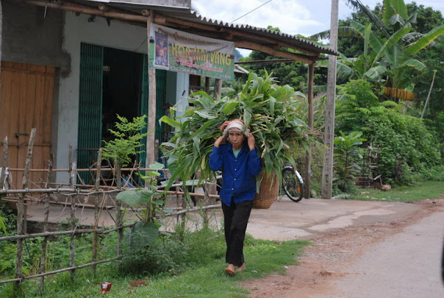 Hoa Binh Voyage