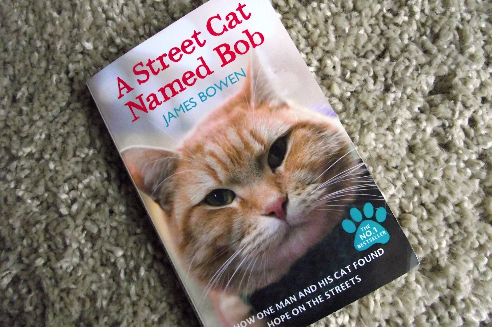 Book Review A Street Cat Named Bob Mapped Out Blog