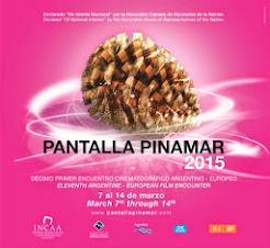 PANTALLA PINAMAR 2015