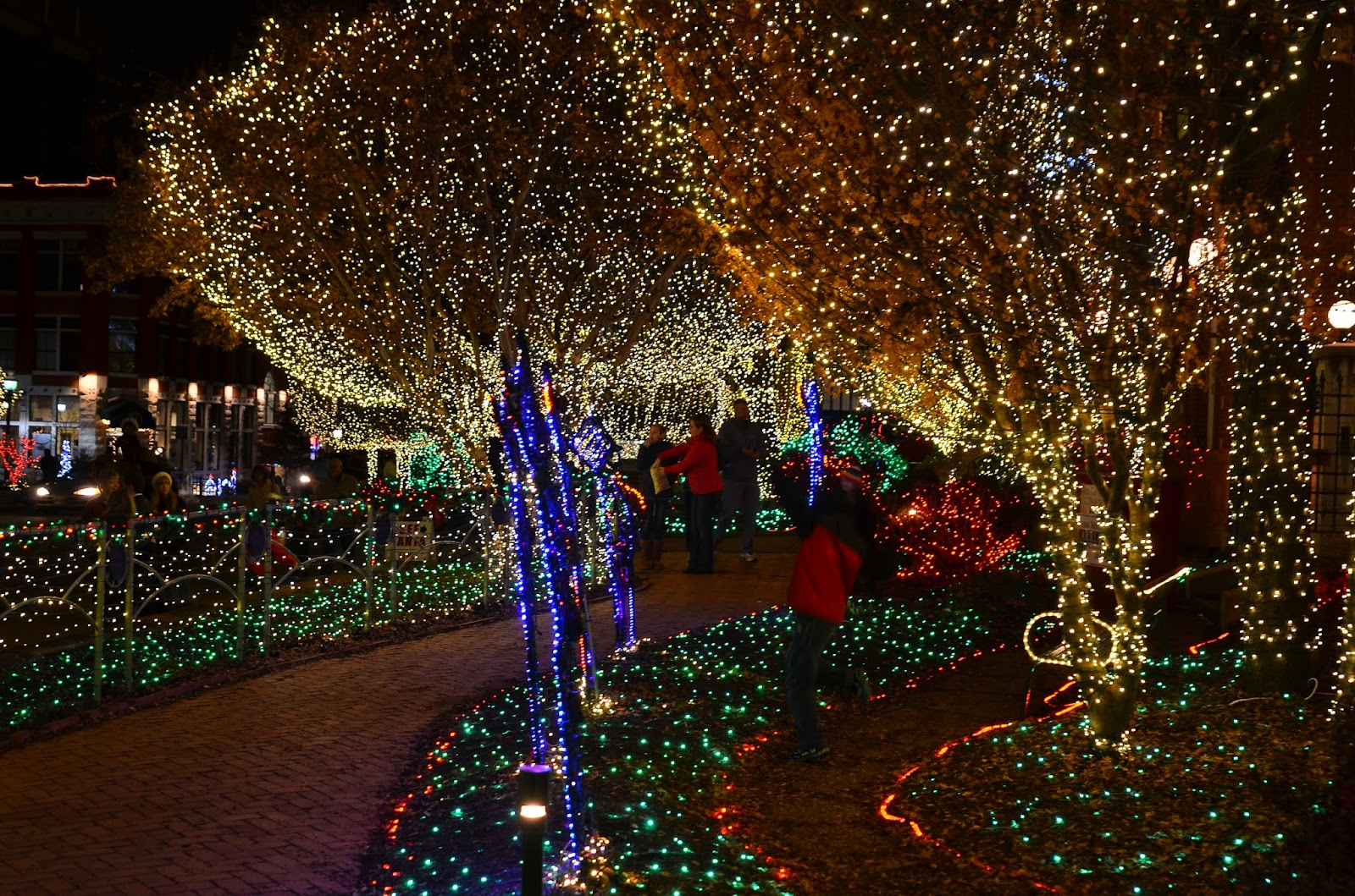 i had read about a huge private light display in fayetteville that you could walk through
