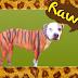 Ο σκύλος - τίγρη...