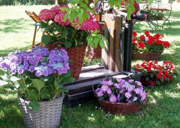 Mi sitio en el mundo - Decoracion con hortensias ...