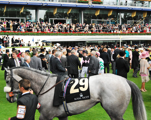 ascot how to get there