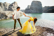 Rowdy Movie Song Photos-thumbnail-12