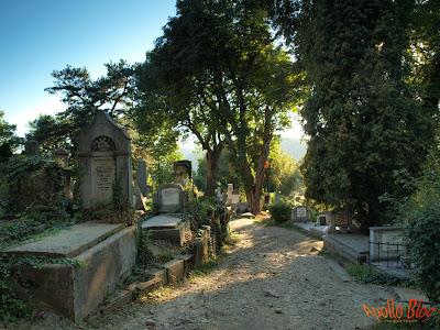 Cimitir Sighisoara