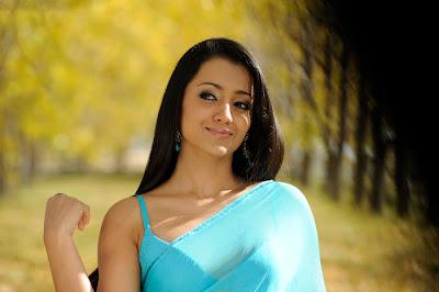 Trisha Sexy In Blue Transparent Saree Photos