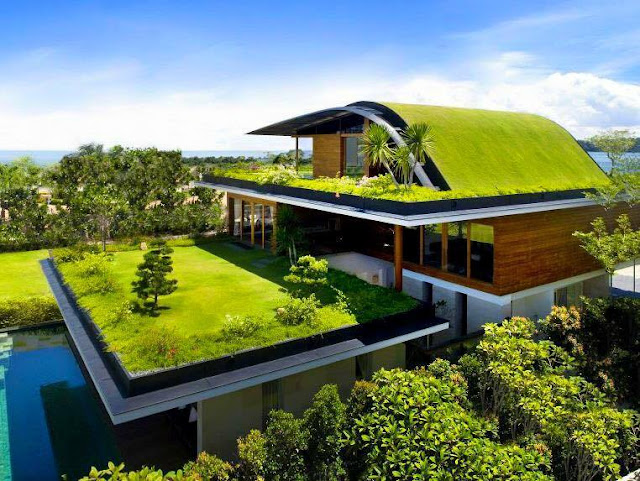 Stunning Green Roof Residences