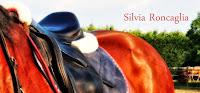 Il Blog di Silvia Roncaglia