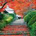 Gardening in Japanese,