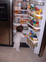 baby getting into fridge