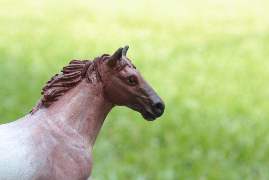 ir relevant  profoundities  model horse repaint