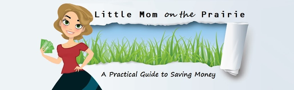            Little Mom on the Prairie                   