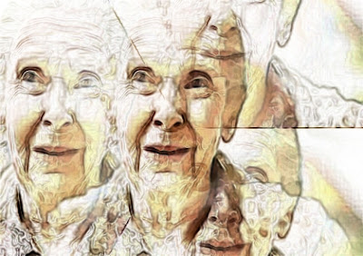 Old Women Collage