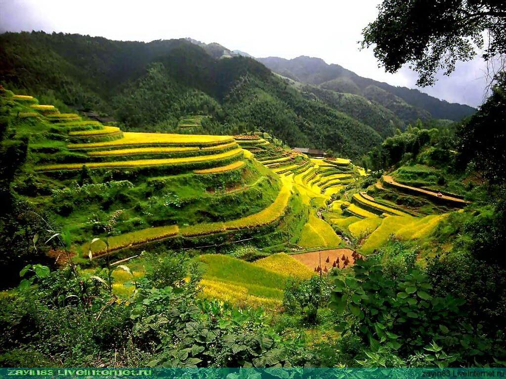 http://4.bp.blogspot.com/-kQp9mVibZQg/TlX6ohBKE3I/AAAAAAAAANA/fs3vXZPmycU/s1600/1_alam_yang_subur.jpg